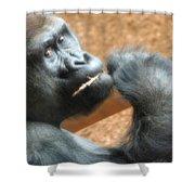 Fiesta Gorilla Shower Curtain