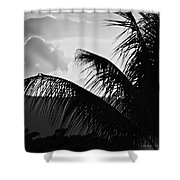 Fifty Shower Curtain