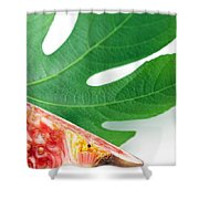Fig And Leaf Shower Curtain
