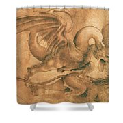 Fight Between A Dragon And A Lion Shower Curtain