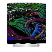 Fight The Dragon Shower Curtain