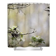 Fighting Ruby Throated Hummingbirds Shower Curtain
