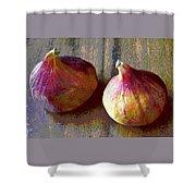 Figs Still Life Pop Art Shower Curtain