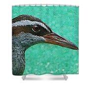 Fijinan Bird 2 Shower Curtain