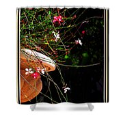 Filigree 4 In A Frame Shower Curtain