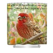 Finch With Verse New Version Shower Curtain