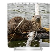 Fine Dining Shower Curtain