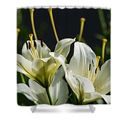 Finishing Blossoming - Featured 3 Shower Curtain