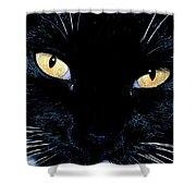 Fiona The Tuxedo Cat Shower Curtain