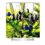 Fir Tree Buds Abstract Shower Curtain