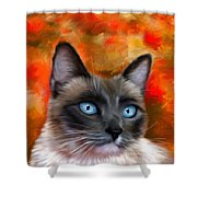 Fire And Ice - Siamese Cat Painting Shower Curtain