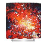 Fire Blazing In The Sky Shower Curtain