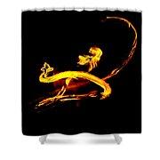 Fire Dancer 3 Shower Curtain