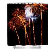 Fire Dandelion Bouquet Shower Curtain