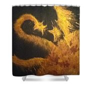Sun Dragon Shower Curtain