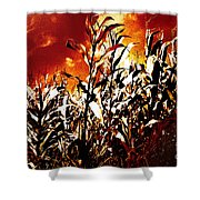 Fire In The Corn Field Shower Curtain