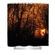 Fire In The Woods Sunset Shower Curtain