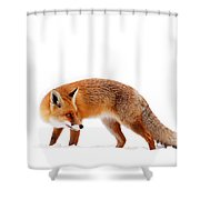 Fire 'n Ice Shower Curtain