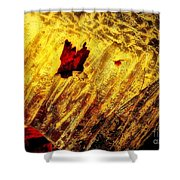 Fire Of The Frost Shower Curtain