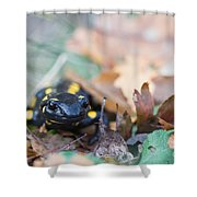 Fire Salamander Dry Leaves Shower Curtain