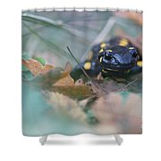 Fire Salamander Front View Shower Curtain