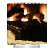 Fireside Cat Nap Shower Curtain