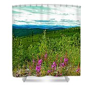 Fireweed And Mountains From Top Of The World Highway-yukon Shower Curtain