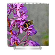 Fireweed Bee Shower Curtain