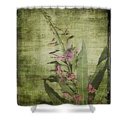 Fireweed - Featured In 'comfortable Art' Group Shower Curtain