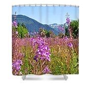 Fireweed Field Shower Curtain