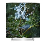 Fireweed Flame Out But Spreading Shower Curtain