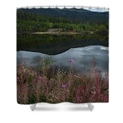 Fireweed Number 7 Shower Curtain