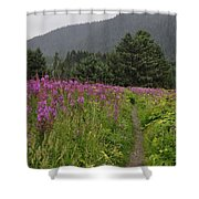 Fireweed Path At Fish Creek Shower Curtain