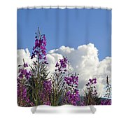 Fireweed Sky Shower Curtain