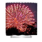 Fireworks 2014  1 Shower Curtain