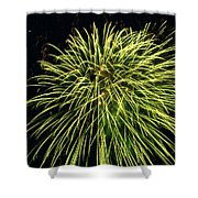 Fireworks At Night 8 Shower Curtain