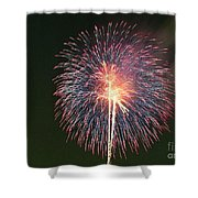 Fireworks At Night 9 Shower Curtain