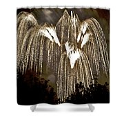 Fireworks Bursts Colors And Shapes 6 Shower Curtain