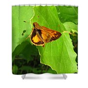 Firey Skipper Butterfly Shower Curtain
