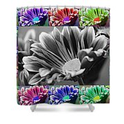 Firmenish Bicolor In All Shades Shower Curtain