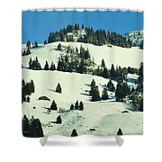 Firs Decoration Winterscape Shower Curtain
