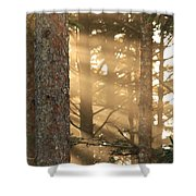 Firs On Fire Shower Curtain