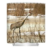 First Crane Shower Curtain