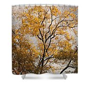 First Day Of Winter 2 Shower Curtain