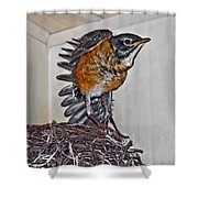 First Flight Preparations Shower Curtain