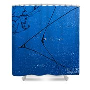 First Frost-3 Shower Curtain