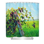 First Fruits Shower Curtain