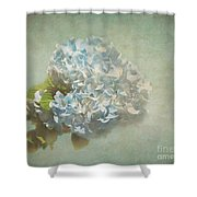 First Hydrangea - Texture Shower Curtain