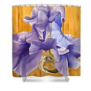 First Iris Of The Season Shower Curtain