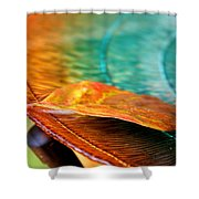 First Leaf Shower Curtain